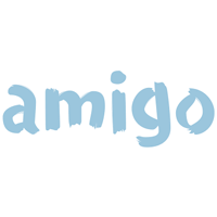 Amigo Holdings PLC Appointment of Hamish Paton as CEO