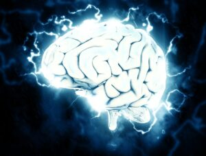 brain-neuroscience