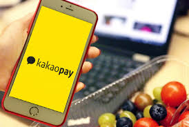 Boku KakaoPay
