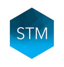 STM Group